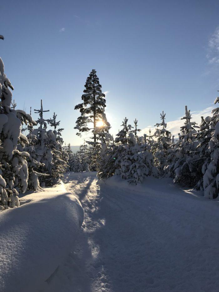 När vintern är som bäst